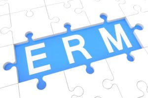 Enterprise Risk Management (ERM) and the Board